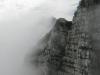Sivi ideal v Jerebici