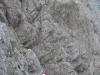 severozahodni_greben_rinke_06-png