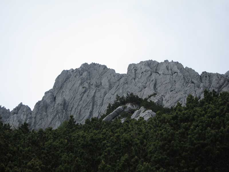 01-novi-vrh